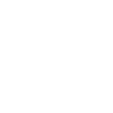 Made in Town
